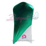 Green Metallic Stretch Chair Cap/ Garment Bag